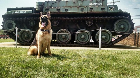 Henry tank.jpgmed